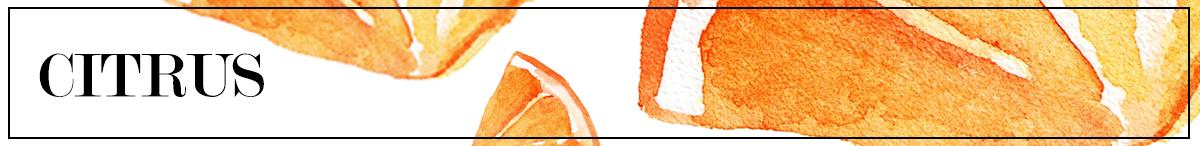BANNER_citrus